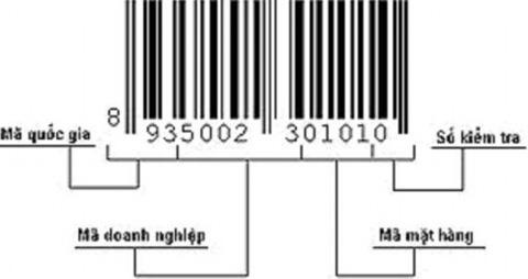 Cấu trúc mã số mã vạch
