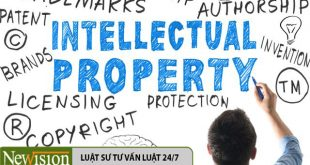 Intellectual+property_mid copy