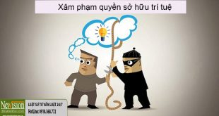 xam-pham-quyen-so-huu-tri-tue