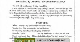 luat-newvision-dai-dien-xin-cap-giay-phep-cho-thue-lai-lao-dong-cho-cong-ty-tnhh-sin-yong